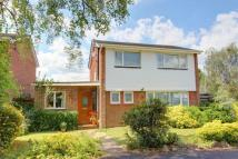 3 bedroom Detached property in The Vikings, Halterworth...