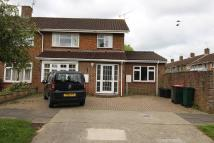 4 bedroom semi detached property to rent in York Road, Tilgate...