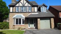 Detached property in Dol Y Pandy, Manor Parc...