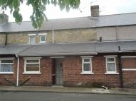Chestnut Street Terraced property to rent