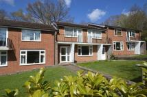 1 bed Ground Flat to rent in Weydown Road, Haslemere