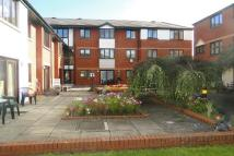 Sheltered Housing to rent in Plas Mawr...