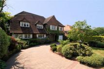 Detached home in Prowse Avenue...