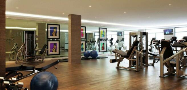 The Gym 2