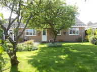 4 bed Detached Bungalow in Raymond Close, Verwood...