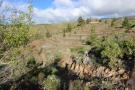 Land in Canary Islands, Tenerife for sale