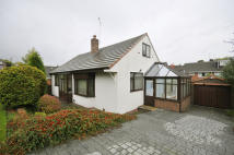 Detached Bungalow for sale in Sough Hall Road...