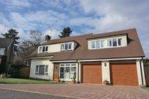 4 bed Detached home for sale in Hollycombe Close, Liphook