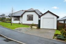Bungalow for sale in Moorland View...