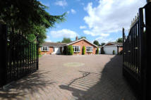 Detached Bungalow in 3 Fallowfield...