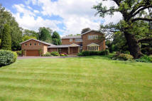 8 bedroom Detached property for sale in Delage, Squirrel Walk...