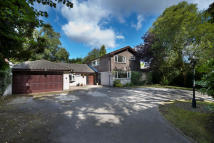 11 Moor Hall Drive Detached house for sale