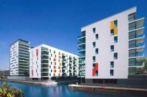 Apartment to rent in Stainsby Rd, South Quay...