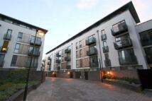 City Walk Apartment to rent