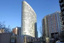 Studio apartment to rent in Fairmount Avenue...