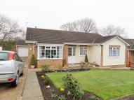 Detached Bungalow in Mulgrave Court...