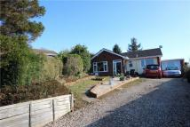 3 bed Bungalow for sale in Bringewood Close, Ludlow...
