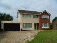 Detached house for sale in Brettingham Avenue...