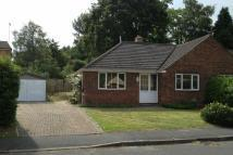 property to rent in Harpesford Ave,  Virginia Water