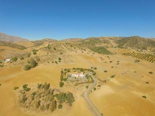 12. Aerial photo