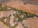 Andalucia Finca for sale