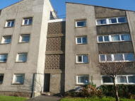 Flat to rent in Mill Court, Rutherglen...
