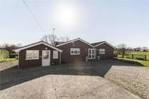 Detached Bungalow to rent in Roman Road, Northallerton