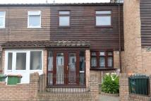 Shipman Road Terraced property to rent
