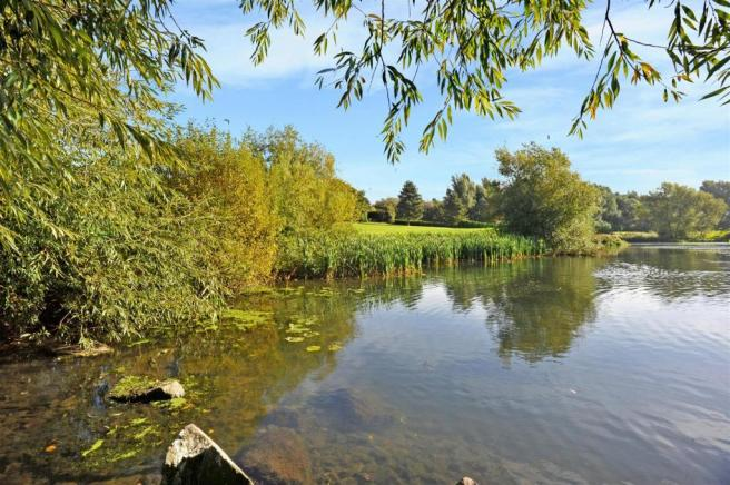 10 Shoal Creek fpz17