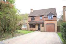 4 bed Detached property in Foxglove Close...