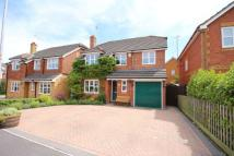 Dunford Place Detached house for sale