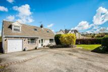 Pen Y Fron Road Detached house for sale