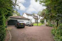 4 bed Detached home for sale in White Lodge...