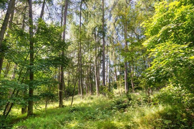 Land Ends Wood...