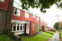 3 bedroom Terraced home to rent in Gainford, Allerdene
