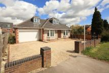 3 bed Detached Bungalow for sale in South Bungalow...