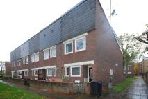 2 bed house to rent in Beatty Road...