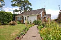 Detached Bungalow for sale in Hivings Court...