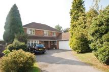 Detached home to rent in Clare Park, Amersham, HP7