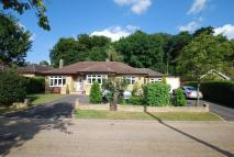 Detached Bungalow for sale in Cherry Drive...