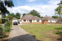 Detached Bungalow for sale in Church Grove, Wexham, SL3