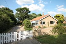 2 bed Detached Bungalow in Bramble Corner...