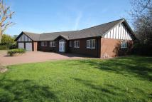 Detached Bungalow for sale in Oaklands, Alford Road...