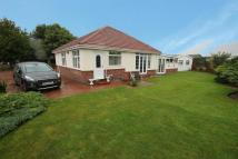 Detached Bungalow for sale in 39 South Road...
