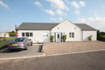 4 bed Detached Bungalow in Rose Cottage...
