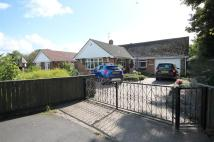 Detached Bungalow in 39 Church Road...