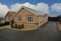 Detached Bungalow for sale in 36 Dymoke Road...