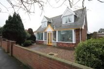 3 bed Detached Bungalow in 53 Waterloo Road...