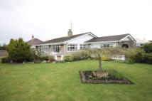 Detached Bungalow in Yew Lodge...