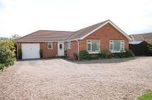Detached Bungalow in Kingfisher, Kent Avenue...